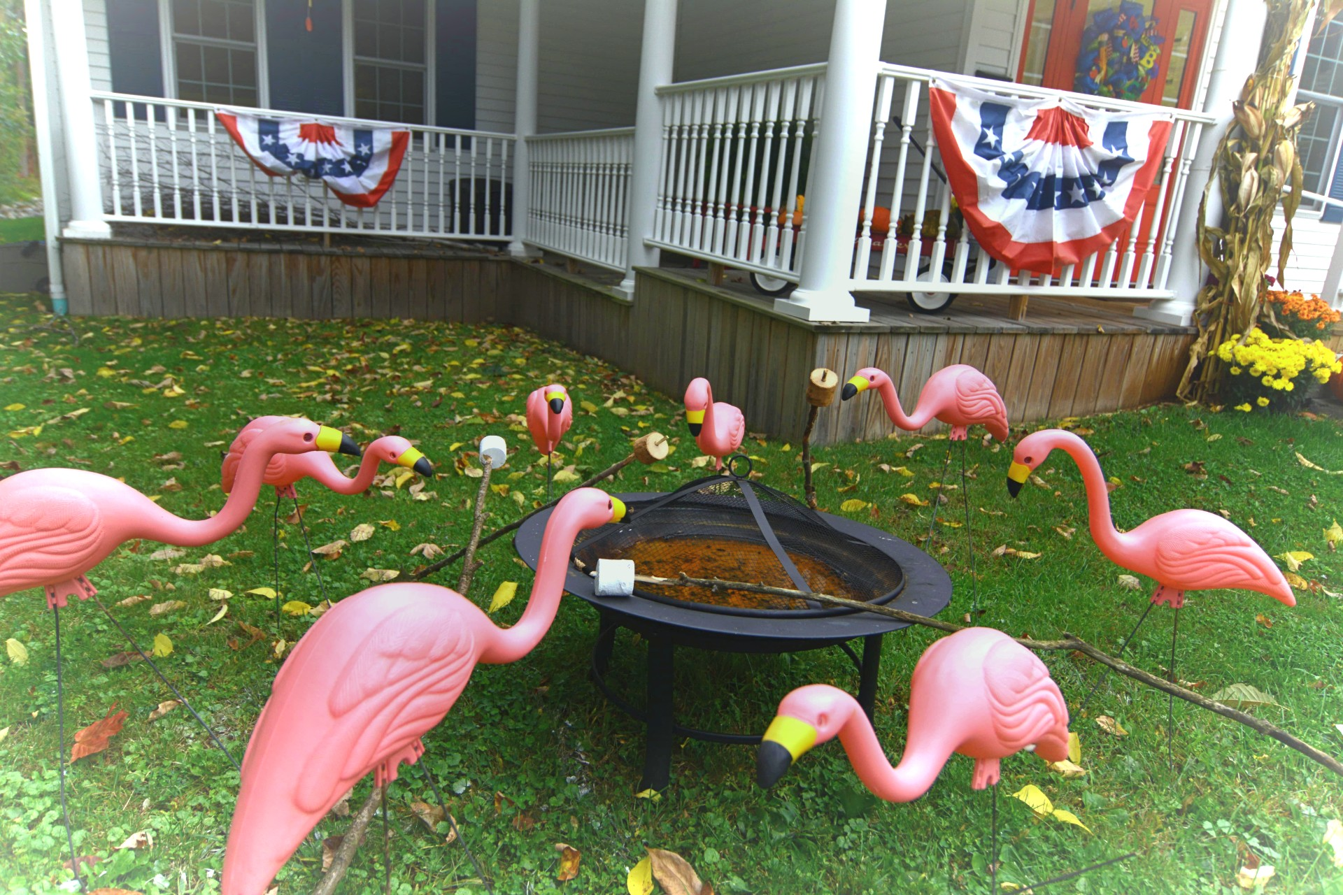 Flamingo Decorations Outside Kids Teeth Only